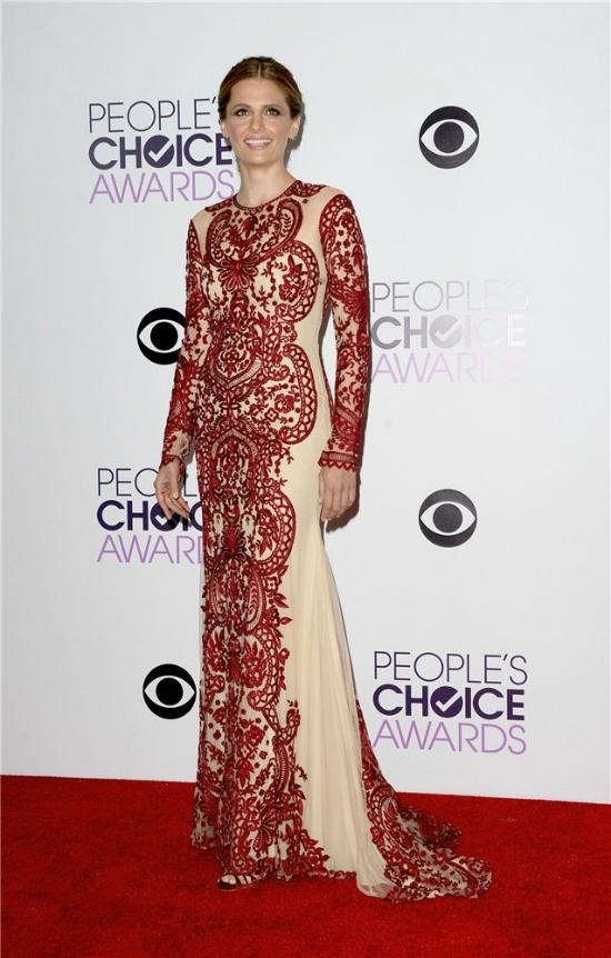 Stana Katic fue imponente con un vestido con personalidad propia. Es un diseño de Naeem Khan y le sienta increíble.