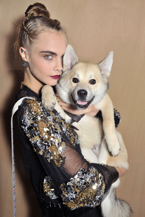 Mandatory Credit: Photo by Swan Gallet/WWD/REX/Shutterstock (5567466q) Cara Delevingne and puppy dog in the front row Chanel show, Spring Summer 2016, Haute Couture, Paris Fashion Week, France - 26 Jan 2016